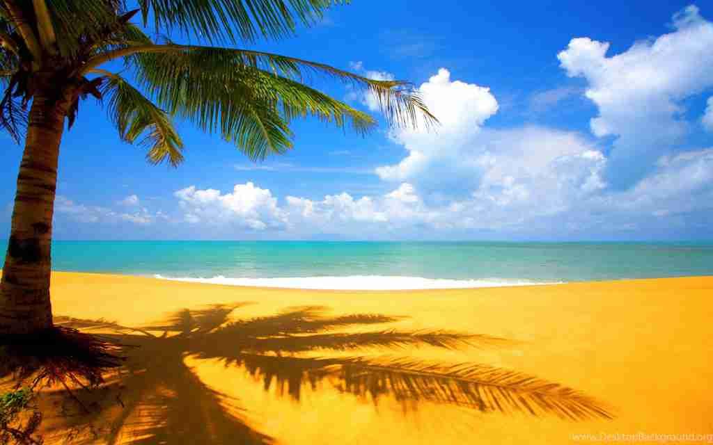 1055835 Beach Grenada Wallpaper Grand Nature 1920x1200 H
