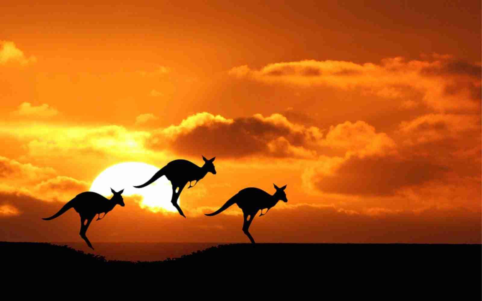 Australia Hd Photos 05941