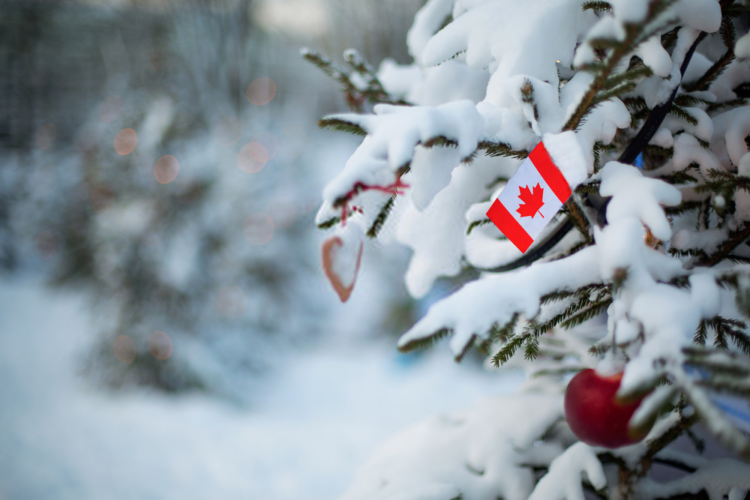 Christmas In Canada 4